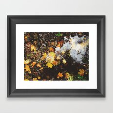 Detail of autumnal leaves and rain in a puddle. Norfolk, UK Framed Art Print