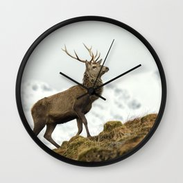 Red Deer Stag in Winter Wall Clock