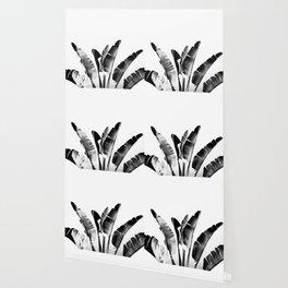 Traveler palm - bw Wallpaper