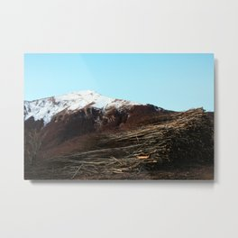 Felled trees Metal Print