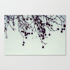 Dead tree balls Canvas Print