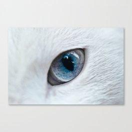 Eye of Cat Canvas Print