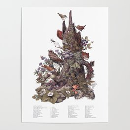 Stump (with labels) Poster