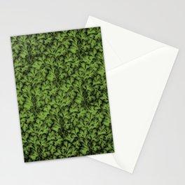 Vintage Floral Lace Leaf Greenery Stationery Cards
