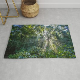 Sun Rays in a Forest Rug