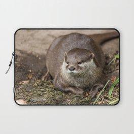 Sunning Otter Laptop Sleeve