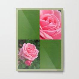 Pink Roses in Anzures 2 Blank Q5F0 Metal Print