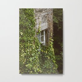 Window of a Damsel Metal Print