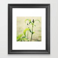 growing wild Framed Art Print