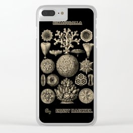 """""""Hexacoralla"""" from """"Art Forms of Nature"""" by Ernst Haeckel Clear iPhone Case"""
