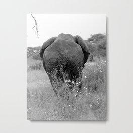 Tembo Metal Print