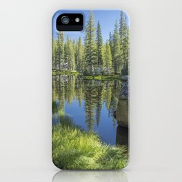 Woody Oasis iPhone Case