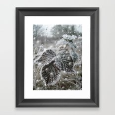 Ice cold beauty Framed Art Print