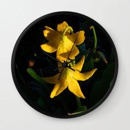 Glacier National Park, Glacier Lilies, Botanical Photography, Floral Print, Yellow Flowers Wall Clock