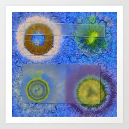 Unparalysed Unconcealed Flowers  ID:16165-032529-06851 Art Print