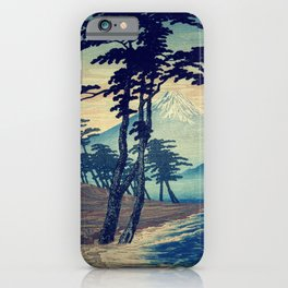 Late swimming after the floods in Hainsay iPhone Case