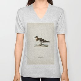 Red-breasted Goose (Branta ruficollis) illustrated by the von Wright brothers Unisex V-Neck