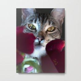Peeking through the Flowers Metal Print