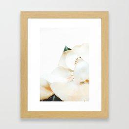 Botanical Magnolia in Color 2 Framed Art Print