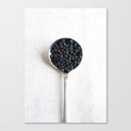 Peppercorns Canvas Print