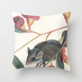 Australian Possum Glider Botanic Art Throw Pillow