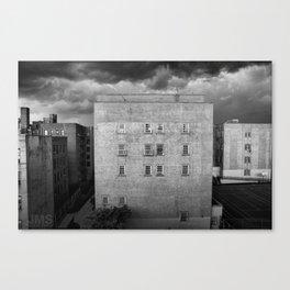 Isolation 3b Canvas Print