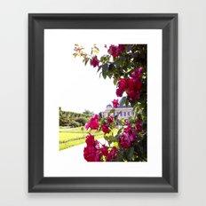 Paris Jardin des Plantes Roses Framed Art Print