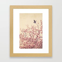 Butterfly and Pink Blossoms Framed Art Print