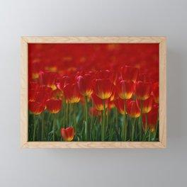 red tulip kingdom Framed Mini Art Print