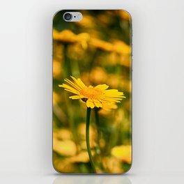 Yellow Dreams iPhone Skin