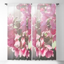 Shades of Pink Blackout Curtain
