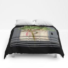 Host of OFF Comforters