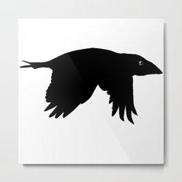 Crow's feet Metal Print
