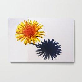 Dandelion and Shadow Metal Print
