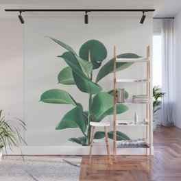 Rubber Fig Wall Mural