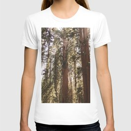 Sequoia National Park XIV T-shirt