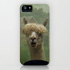 Alpaca Farm iPhone (5, 5s) Slim Case