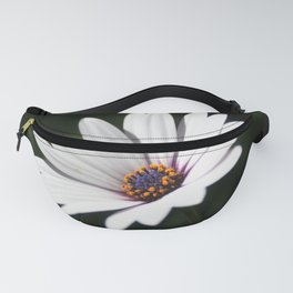 Daisy flower blooming close-up Fanny Pack