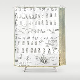 Stages of the Honey Bee Shower Curtain