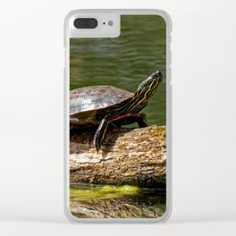 Painted Turtle on a Log - Photography Clear iPhone Case