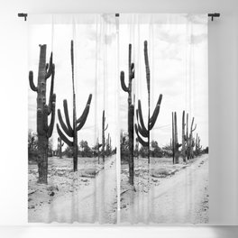 Rural Arizona near Florence Arizona Blackout Curtain
