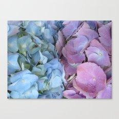 b&p flowers  Canvas Print