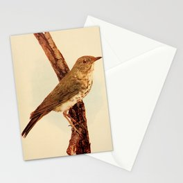 Neltje Blanchan - Bird Neighbours (1903) - Wilson's Thrush Stationery Cards