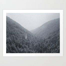 Quiet winter Art Print