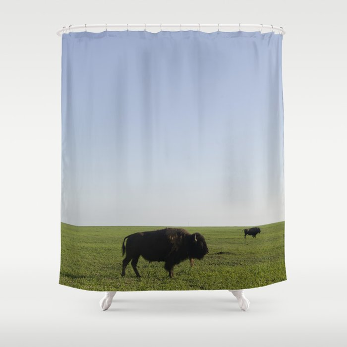 Buffalo Shower Curtain By Johndan