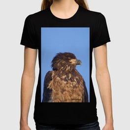 Golden Eagle on the Kenai T-shirt