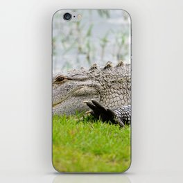 Gator High Five iPhone Skin