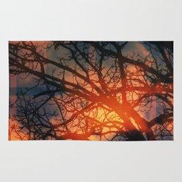 Trees In The Golden fog Rug