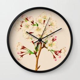 Yoshino Cherry Blossoms ~ Vintage Japan Art Wall Clock