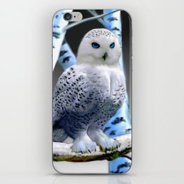 Blue-eyed Snow Owl iPhone Skin